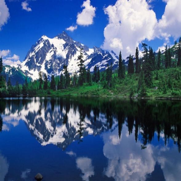 Washington State Native Plants: Washington State Holidays 2015/2016