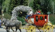 Wild West horse drawn carriage