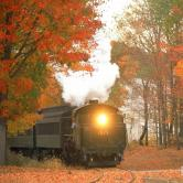 Train and fall foliage