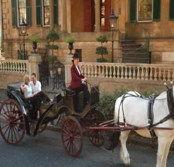Horse & Carriage Sav GA