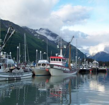 Valdez harbour
