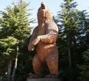 Grouse Mountain wood carved bear