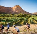 Colorado vineyard & cyclists
