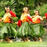 Hawaiian dancers 2