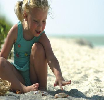 Little girl shelling, Sanibel